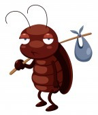 16261563-illustration-of-cockroach-cartoon-get-out
