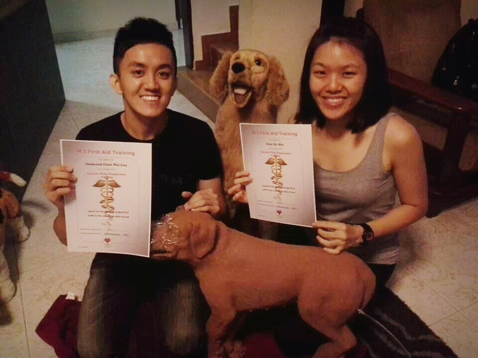 We're Canine First Aid & CPR trained!